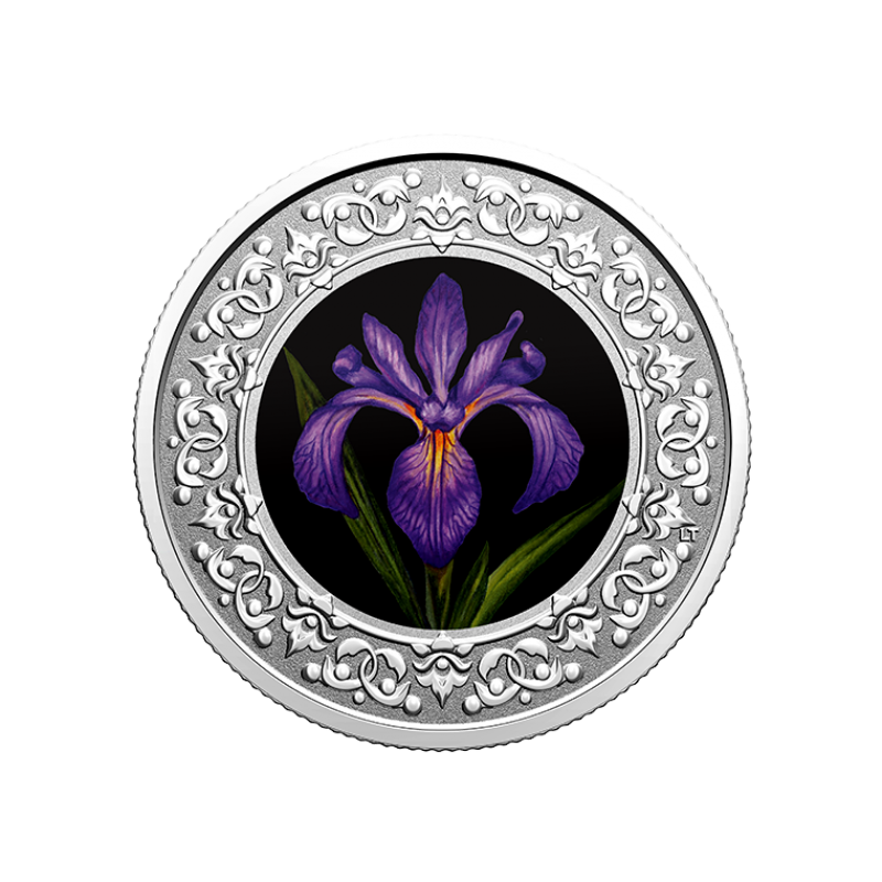 """""""Национальные цветы  провинций Канады"""" - """"Ирис. Квебек."""" 3 $ Канады 2020  г. 99,99% серебряная монета с цветной печатью 7,96 г."""