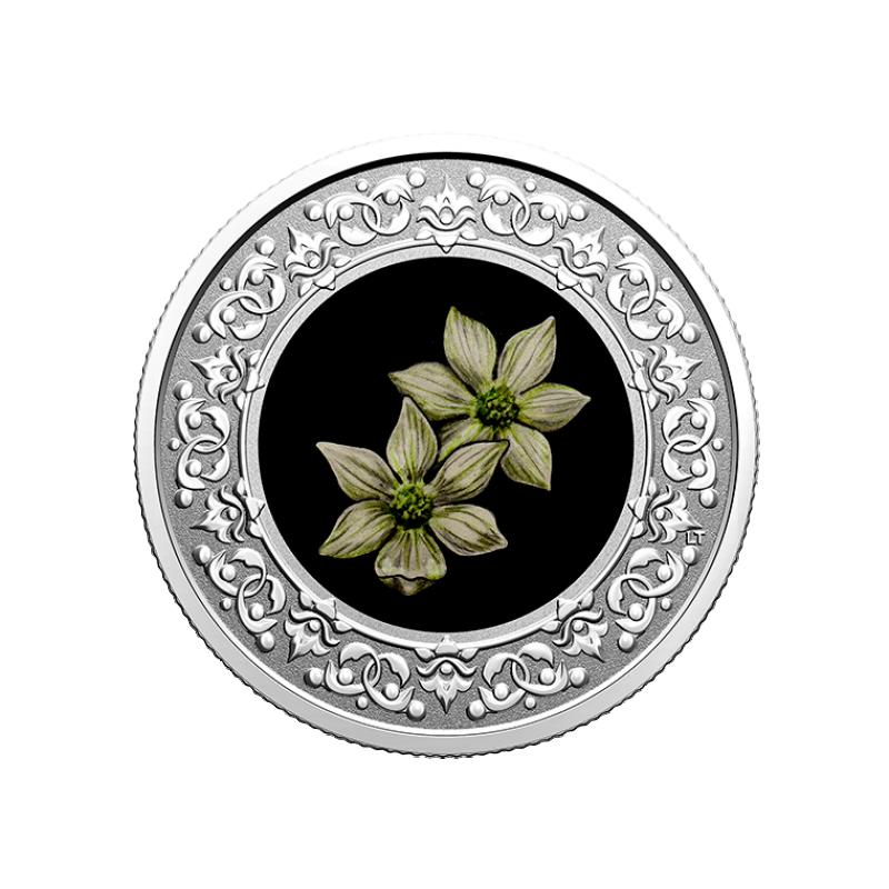"""""""Национальные цветы  провинций Канады"""" Бентамидия Наттолла. Британскоая Колумбия""""3 $ Канады 2020 г. 99,99% серебряная монета с цветной печатью 7,96 г."""