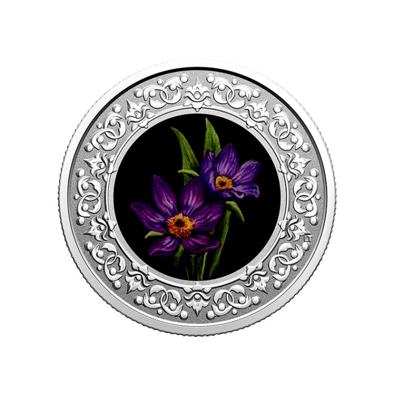 """""""Национальные цветы  провинций Канады"""" - Прерия Крокус. Манитоба."""" 3 $ Канады 2020  г. 99,99% серебряная монета с цветной печатью 7,96 г."""