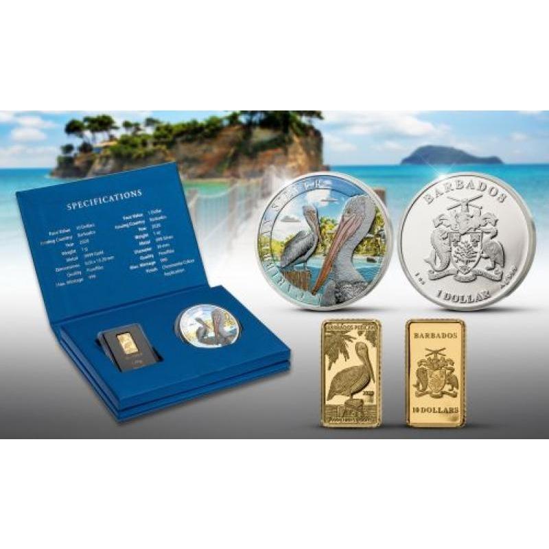 Тропические птицы - Пеликан. набор: Барбадос 10 $ 2020 99,99% золотая монета и 99:8% серебряная монета