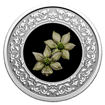 Kanada maakondade rahvuslilled - Kontpuu. Briti Columbia. Kanada 3 $ 2020.a. värvitrükis pööratud proof kvaliteediga 99.99% hõbemünt, 7.96 g
