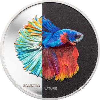 Eklektinen luonto - Taistelukala. Cookin saari 5 $ 2021.v. 99,9% hopearaha väripainatuksella. 31.1 g