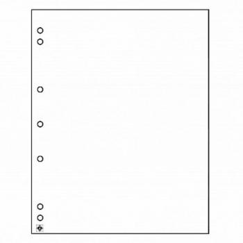 NUMIS  картонный лист
