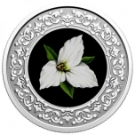 Floral Emblems of Canada: Ontario. White Trillium Canada 3$ 2020 99,99% Silver Coloured Coin 7,96 g