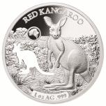 Australia kuviot -  Punajättikenguru -  Salomonsaaret 5 $ 2019.v. 99,9% hopearaha, 1 unssi
