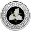 Kanada maakondade rahvuslilled -Suureõieline kolmiklill. Ontario. Kanada 3 $ 2020.a. värvitrükis pööratud proof kvaliteediga 99.99% hõbemünt, 7.96 g