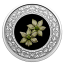 Floral Emblems of Canada. Pacific Dogwood. British Columbia Canada 3$ 2020 99,99% Silver Coloured Coin 7,96 g